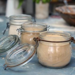 Dried Malt Extract DME (Spraymalt)