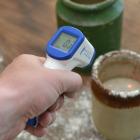 Mini RayTemp Infrared Thermometer